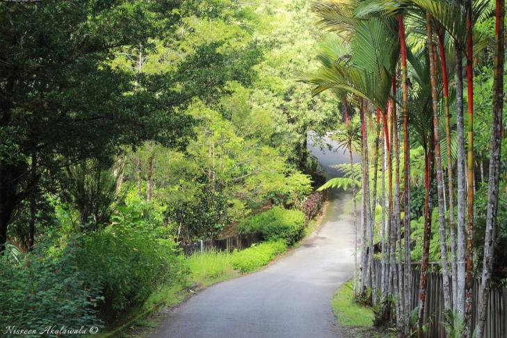 Entrance to Sememggoh Orangutan Sanctuary