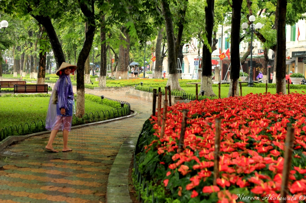 Hanoi city lake garden